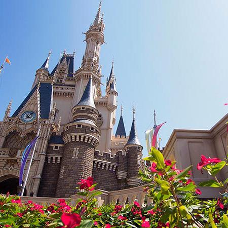 #夏の東京ディズニーランドの楽しみ方のイメージ